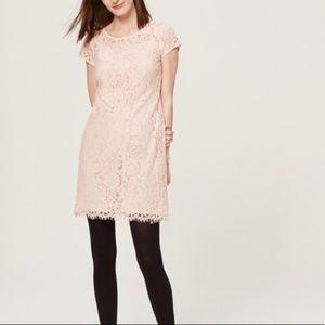 LOFT Blush Pink Lace Overlay Dress